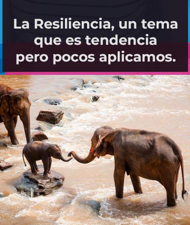 La Resiliencia, un tema que es tendencia pero pocos aplicamos.